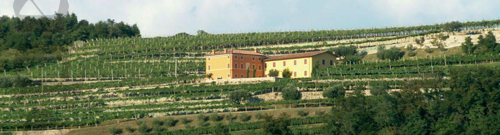Speri Winery in Valpolicella